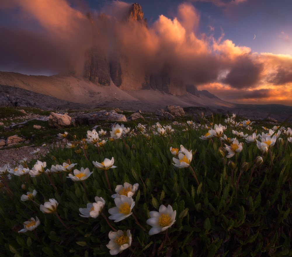 This Photo Was Taken During The Sunset Over Tre Cime Di Lavaredo In Dolomites The Flowers I National Geographic Photography Best Landscape Photography Scenery