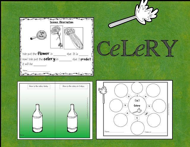 Sensational Celery Plants Kindergarten crayons, Cool