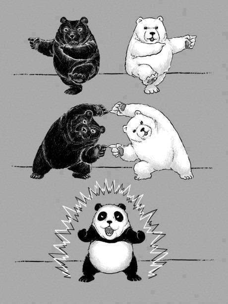 Panda fusión