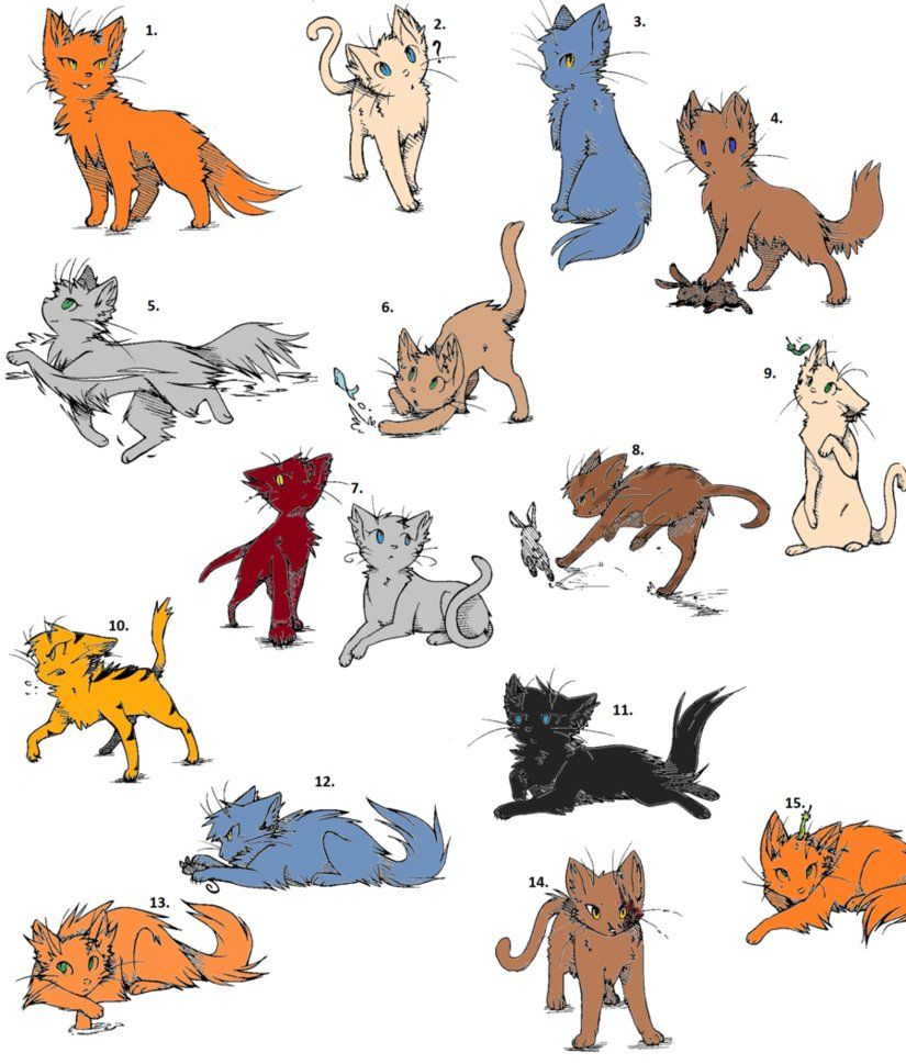Adoptibles With Images Warrior Cat Drawings Cartoon Cat