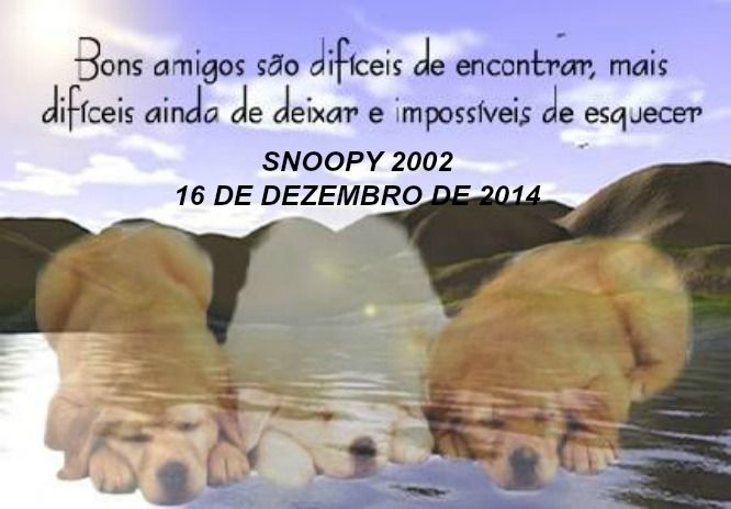 "SNOOPY ""DESCASE EM PAZ  2002 16 DE DEZEMBRO DE 2014"