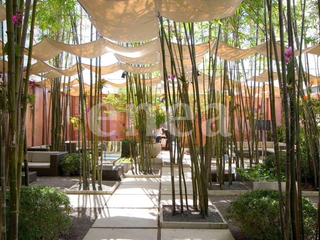 Enea garden lounge gardens landscape designs and garden for Landscape design miami