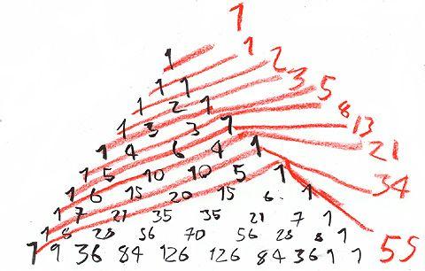 Fibonacci Sequence Ayurveda Math With Images Fibonacci