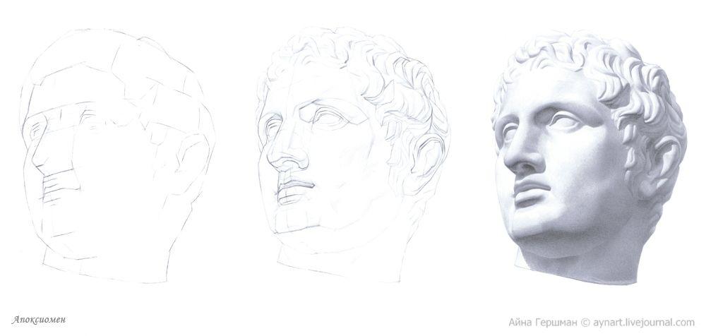 Академический рисунок головы Апоксиомена из методического ...
