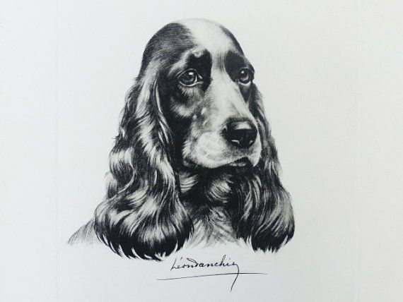 leon danchin the cocker spaniel colored etching original lithograph signed and dated signed. Black Bedroom Furniture Sets. Home Design Ideas