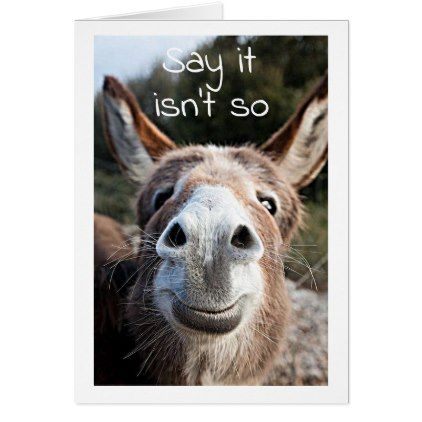 Poor Donkey Confused 45th Birthday Not You Card Pinterest