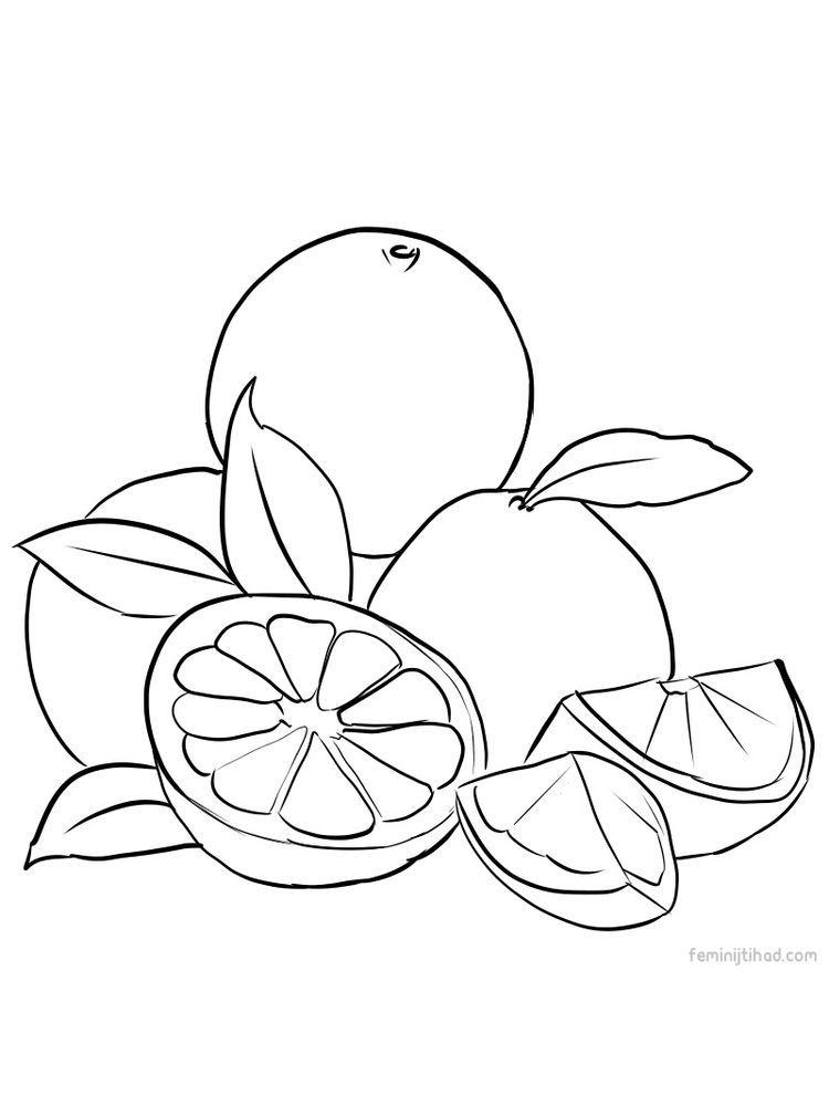 Grapefruit Coloring Images Free Download Em 2020 Com Imagens