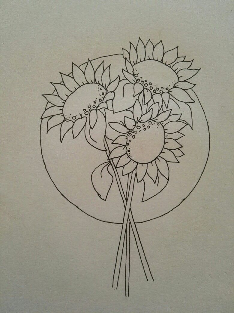 Pin by shannon lee on sunflower line drawings pinterest