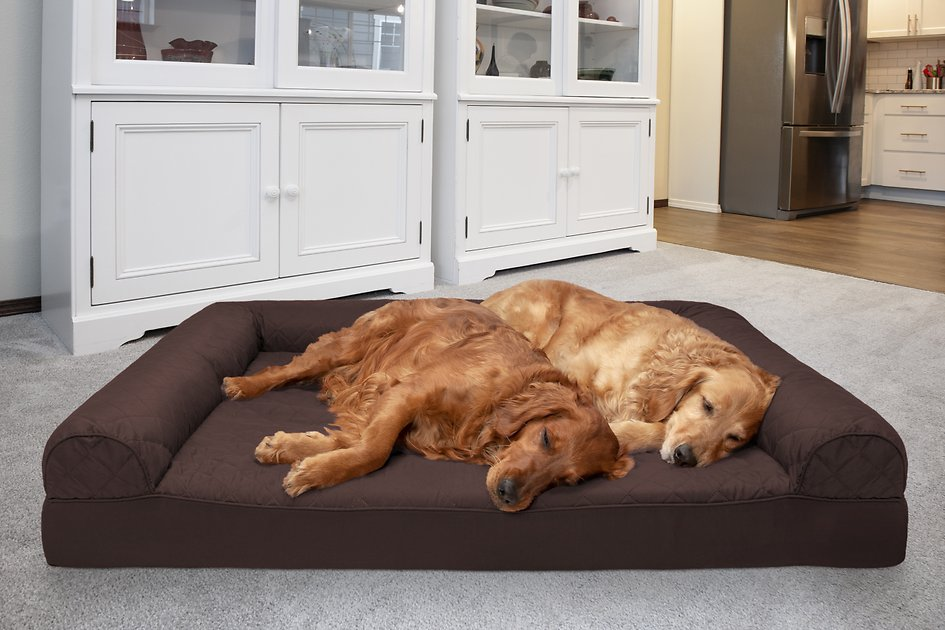Buy Furhaven Quilted Orthopedic Bolster Cat Dog Bed W Removable Cover Coffee Jumbo Plus At Chewy Com Free Shipping In 2020 Mattress Dog Bed Dog Bed Cool Dog Beds
