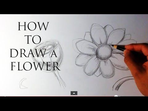 How To Draw A Flower Easy Drawings Youtube Drawing Tips