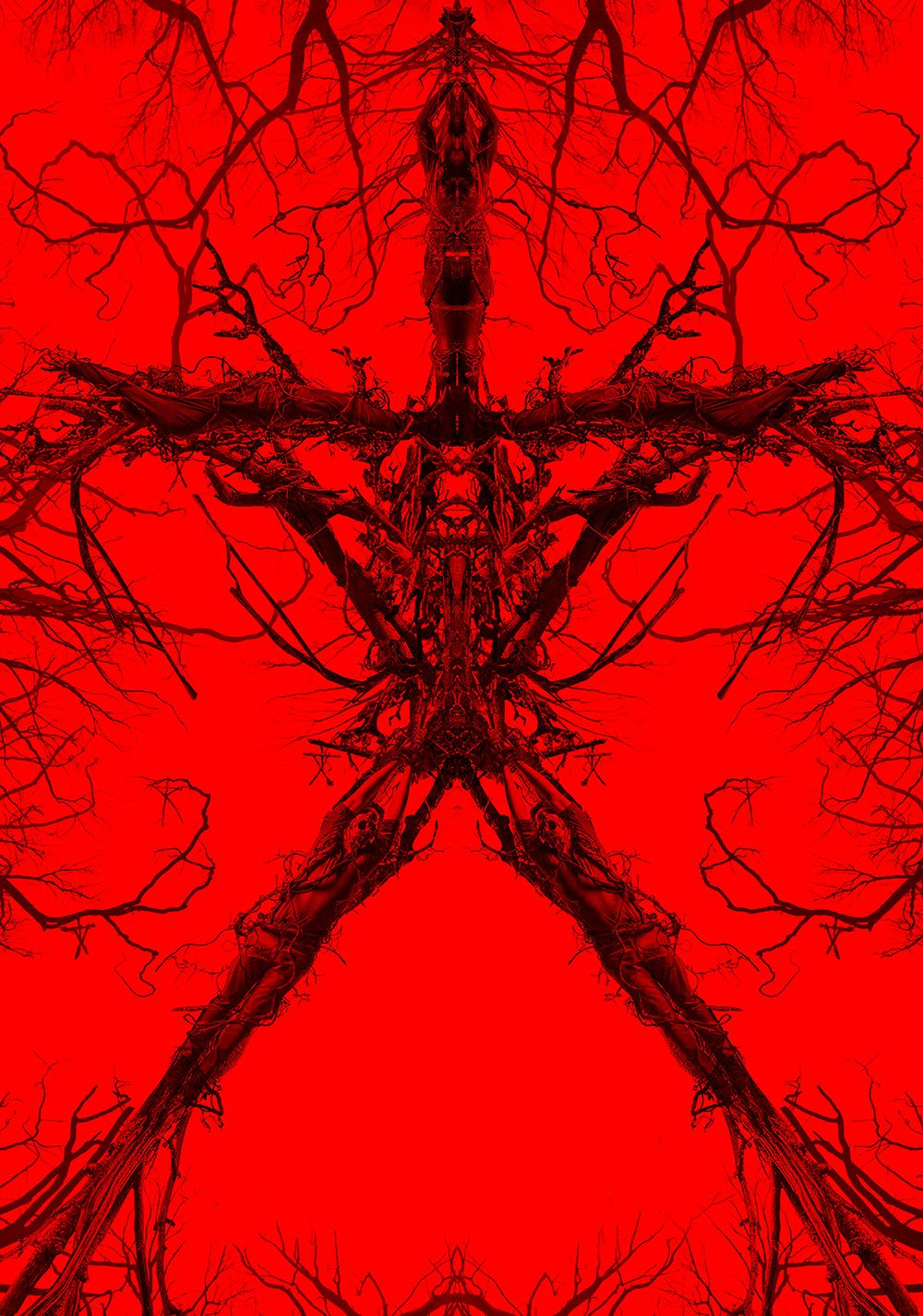 blair witch movie download in tamil
