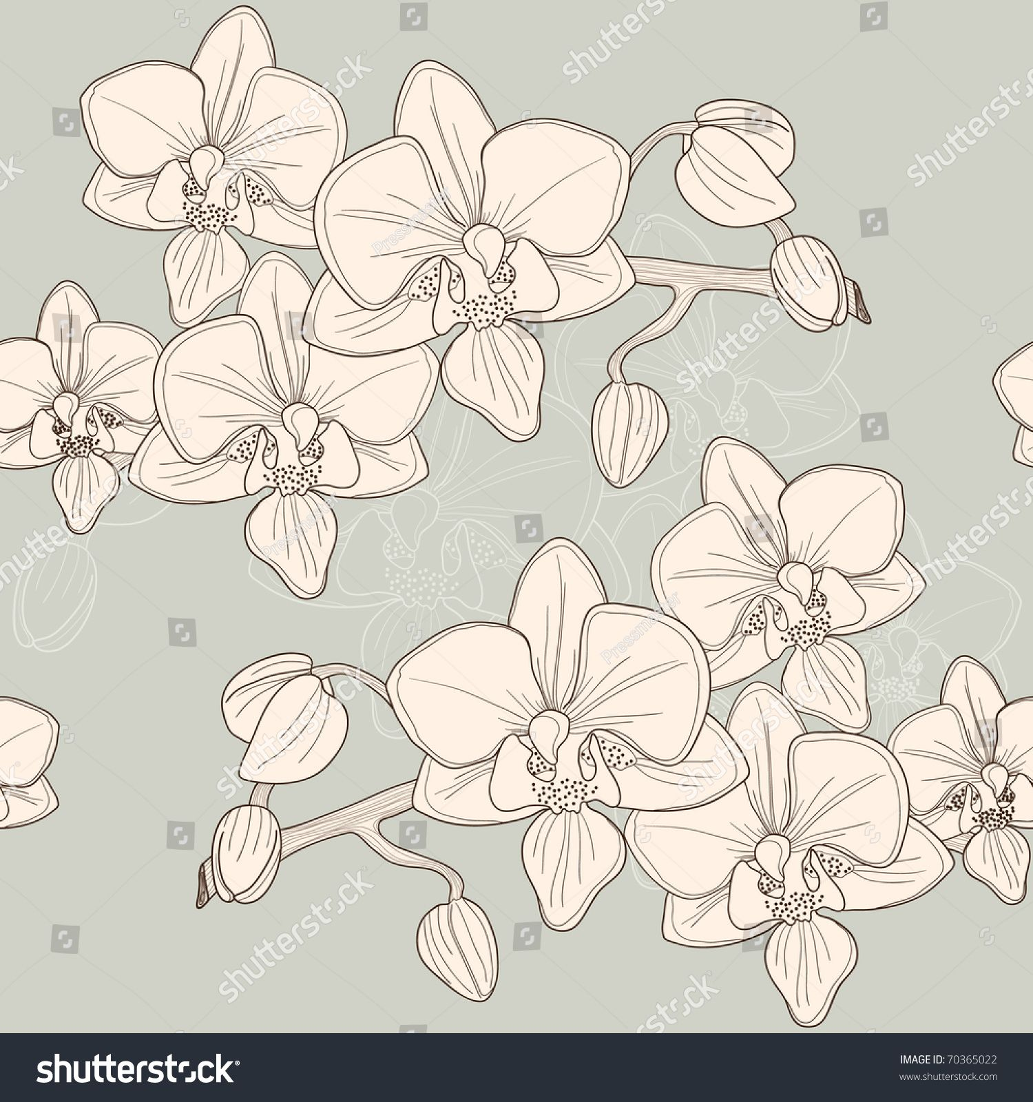 35+ Black And White Orchid Clipart
