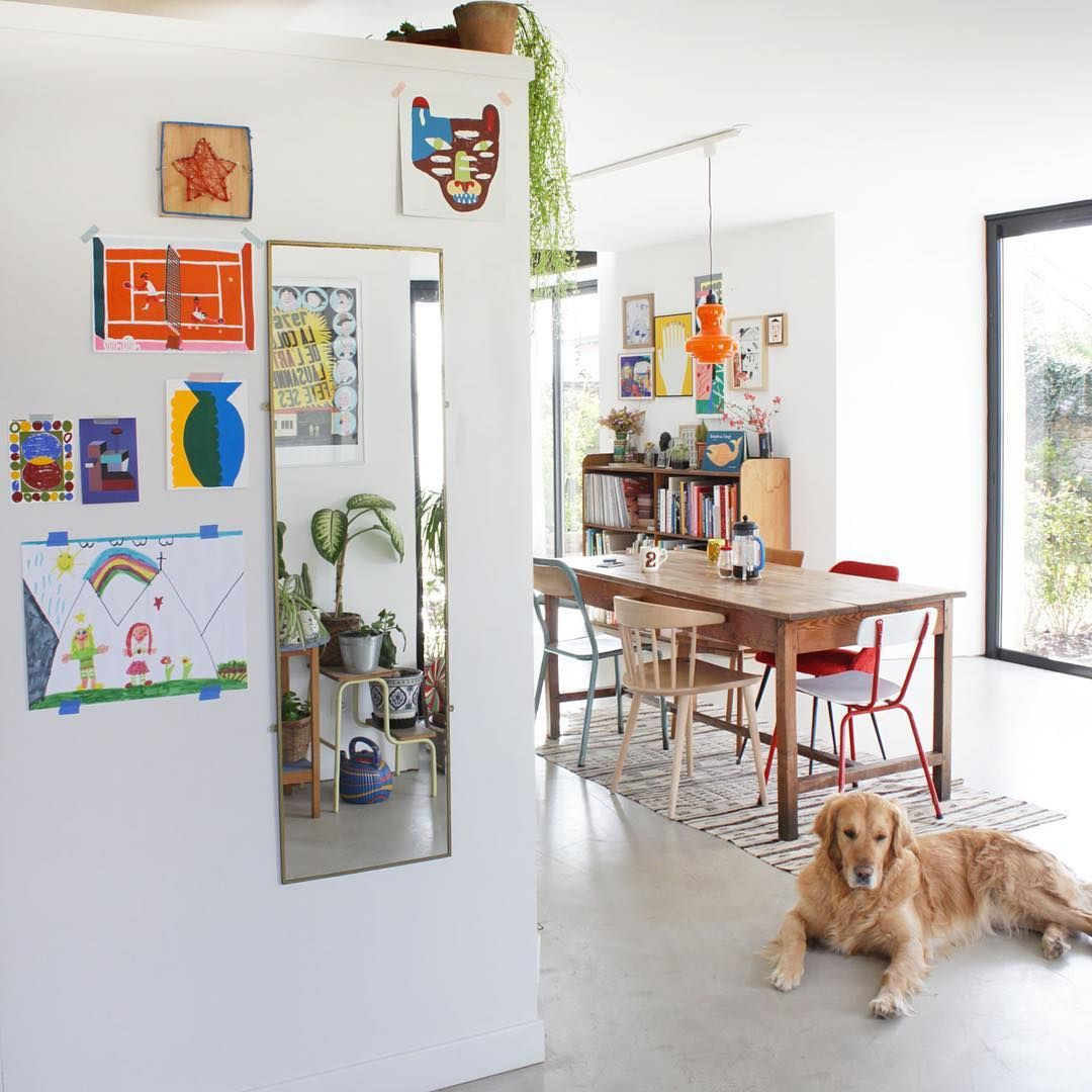 Atelier Bingo On Instagram Home Dog Dogs Gallery