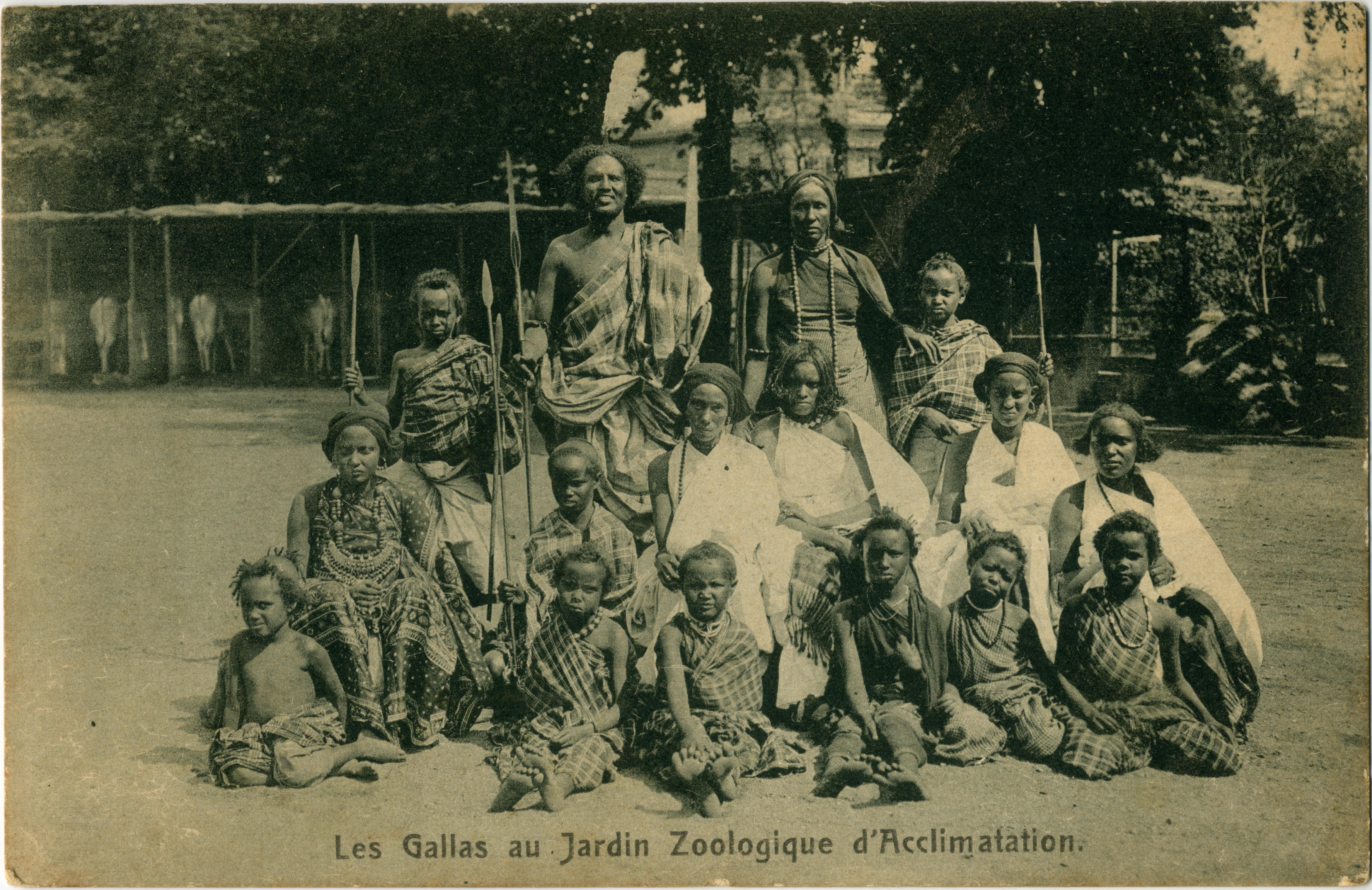 Les Gallas Jardin Zoologique D Acclimatation De Paris Carte