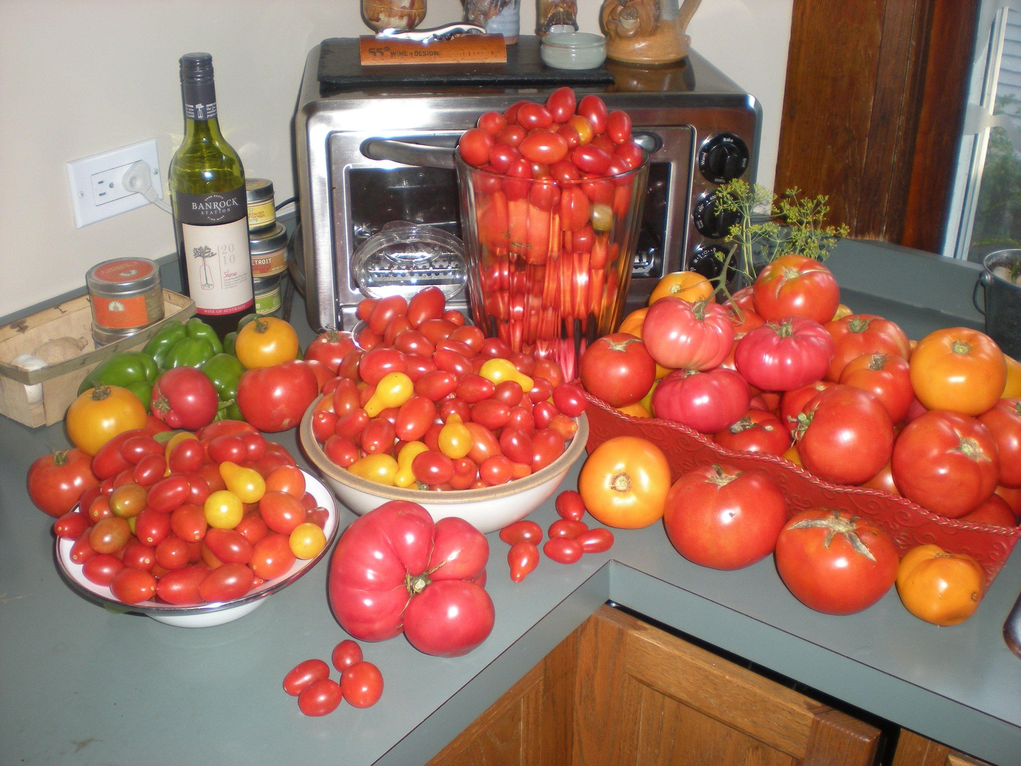 Heirloom Tomatoes Harvest Heirloom Tomatoes Heirloom Seeds Tomato