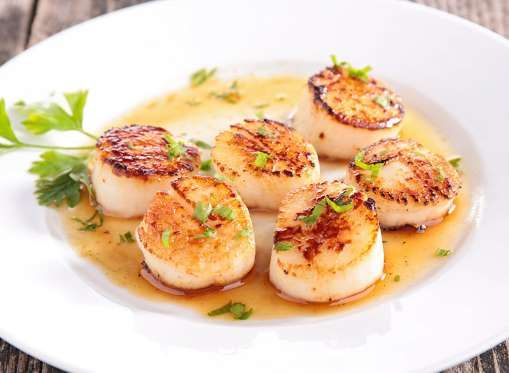 Every Popular Fish Ranked For Nutritional Benefits Scallop Recipes Fish Recipes Grilled Fish Recipes