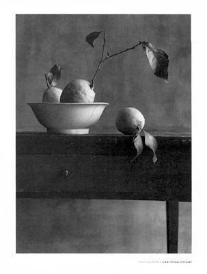 Cote Sud Christian Coigny Art Print