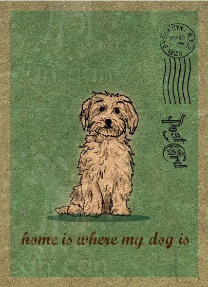ilustraciones can can , cute dog http://cancan4dogs.blogspot.com.es/