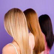 Haarfarben 2019: Die Trendfarben im Video #pflanzenimschlafzimmer Pflanzen im Sc ... #pflanzenimschlafzimmer
