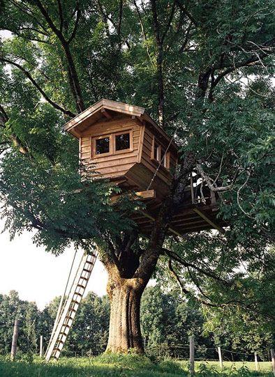 Baumhaus Beispiele aus aller Welt 1