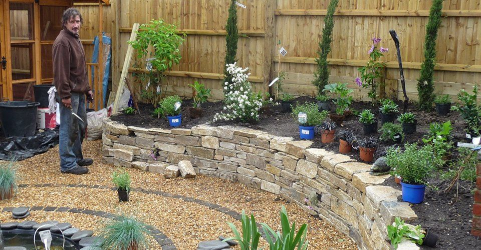 swanage easy maintenance mediterranean garden tigress garden design