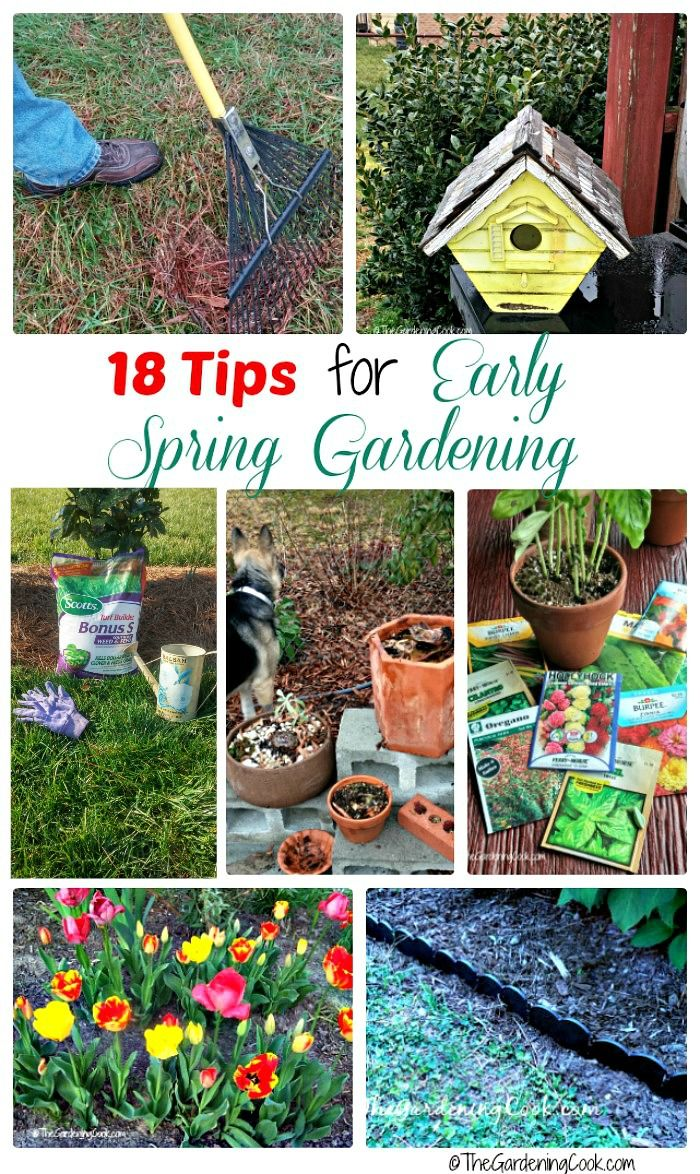 Getting A Great Garden In Summer Starts Now. These Early Garden Projects  Will Make Sure That Your Garden And Lawn Are The Talk Of The Neighborhood  All ...