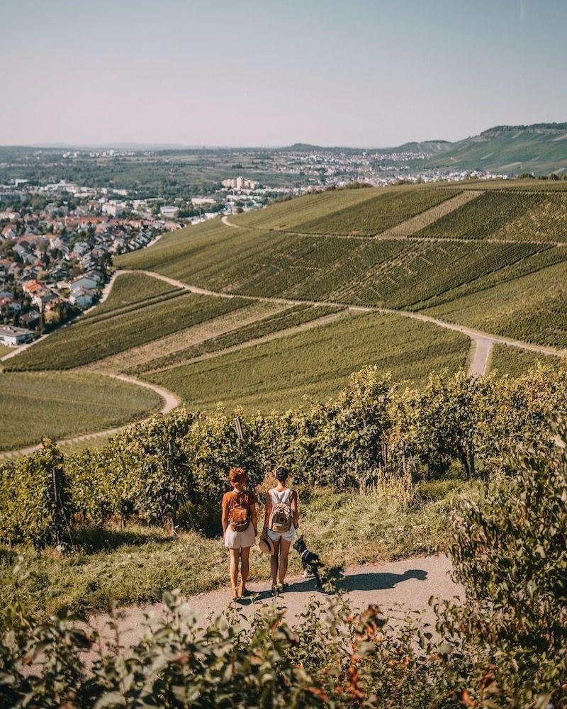 Ausflugsziele Stuttgart 10 Geniale Touren Die Sich Lohnen In 2020 Ausflugsziele Stuttgart Ausflugsziele Ausflug