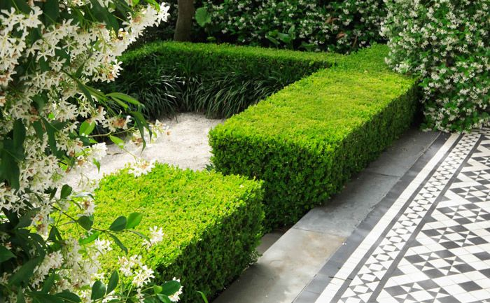 Grand garden design sydney good manors ogrdgarden pinterest grand garden design sydney good manors workwithnaturefo