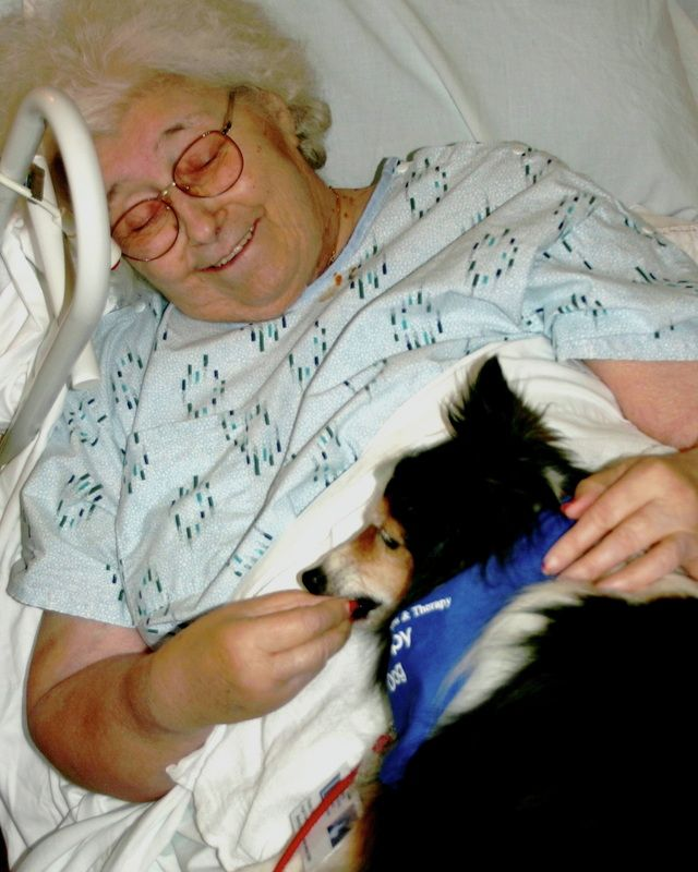 Health Care Visitation Therapy Dogs Ohio Animal Assisted