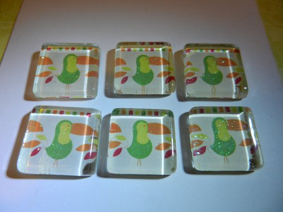 Toucan Magnets Set of 6 by CloudNineDesignz on Etsy, $8.00