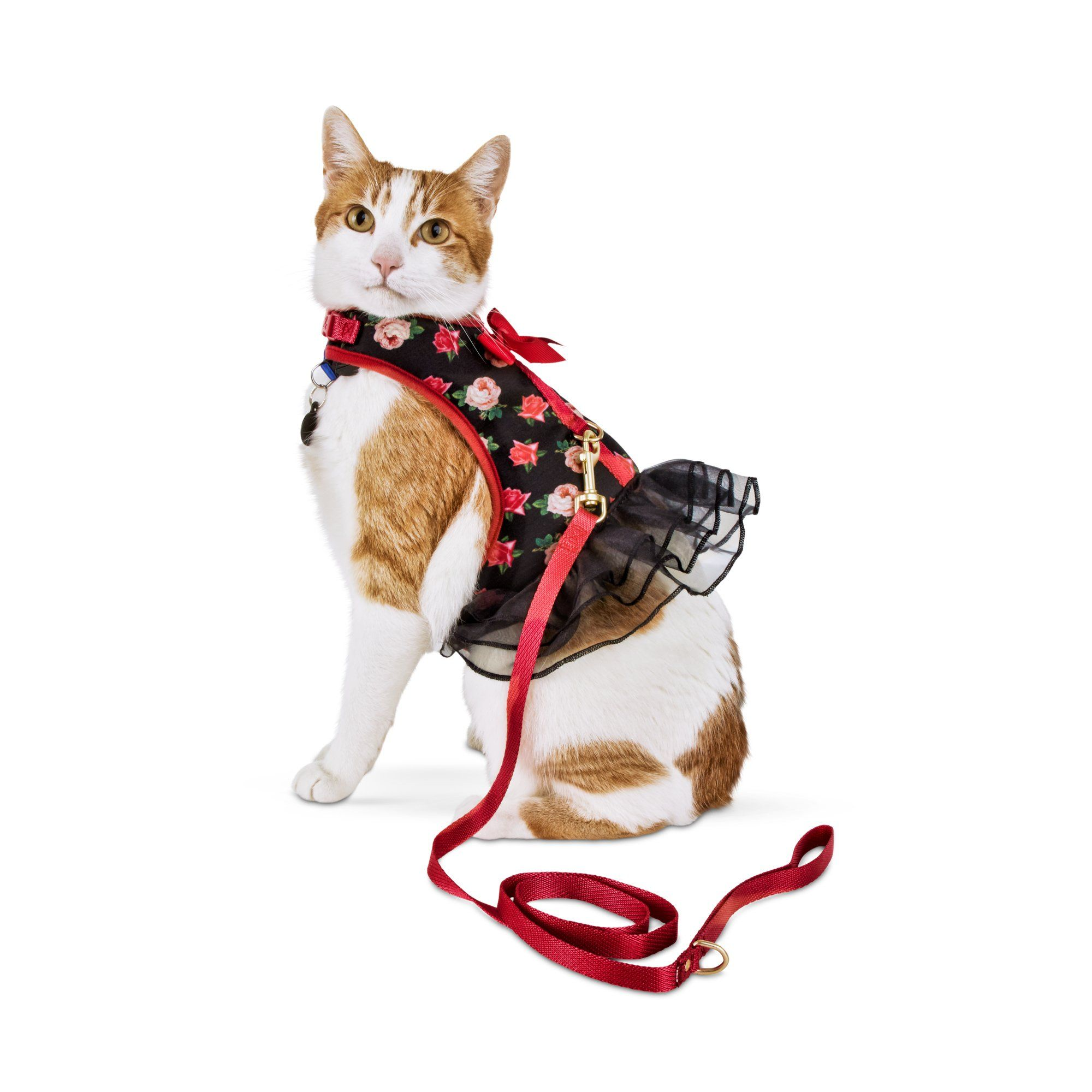 Pin By Katrina Descoteaux On Funny Things And Cool Things Cat Harness Cat Clothes Pink Rose Print