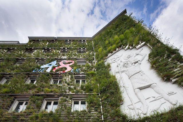 Bilder Vom Fassadenwildwuchs News Orf At Fassadenbegrunung Fassade Backsteinbau