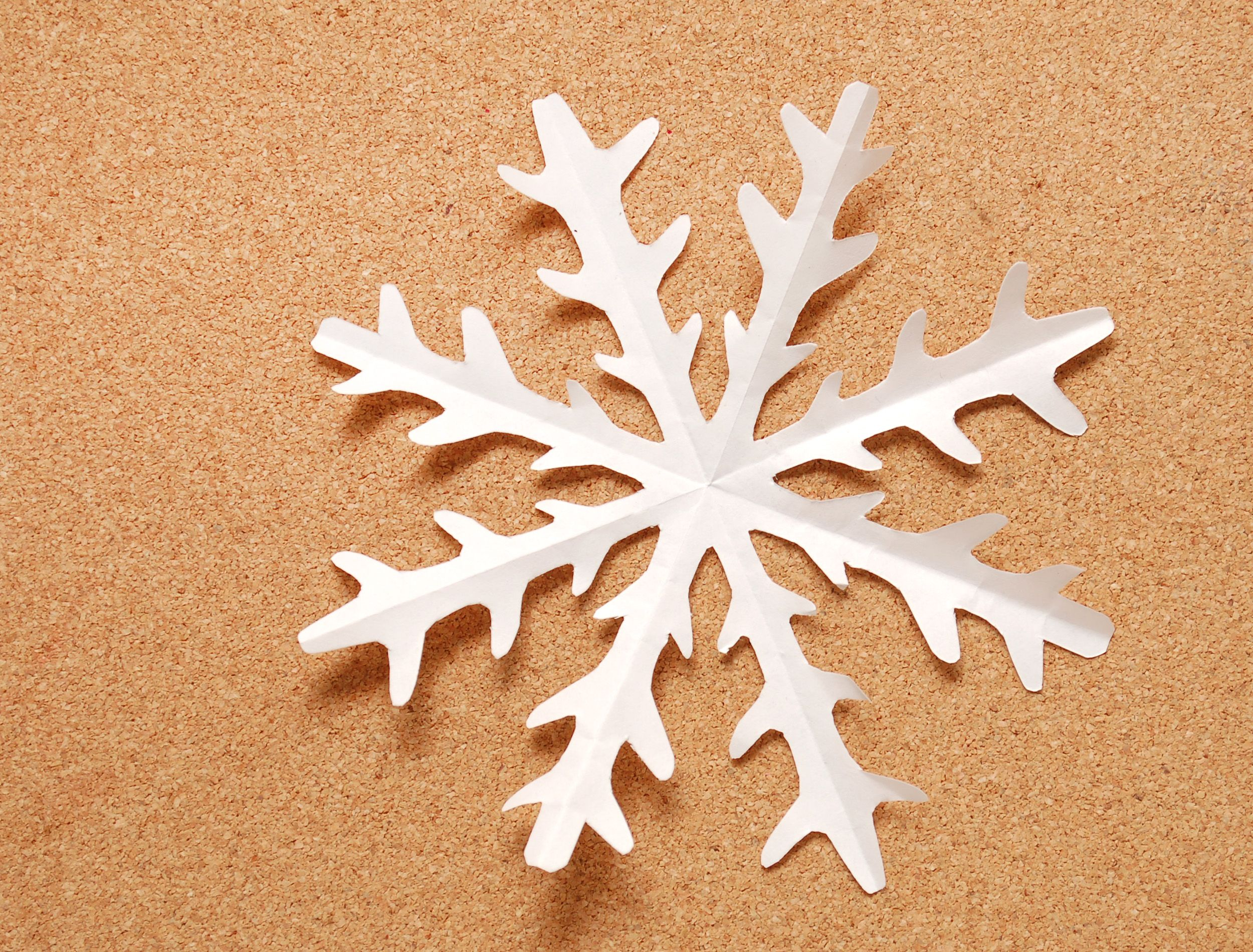 Make a Kirigami Paper Snowflake