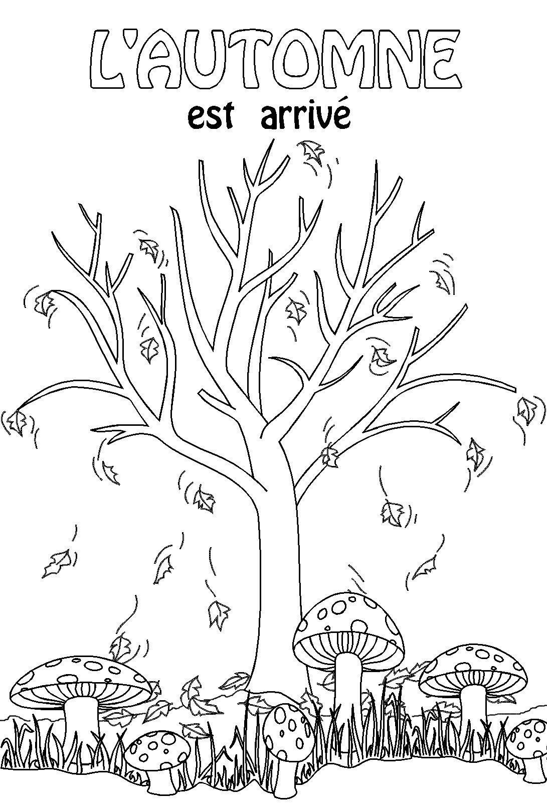 Le th me de l 39 automne la maternelle arts pinterest la maternelle les themes et maternelle - Activite automne maternelle ...