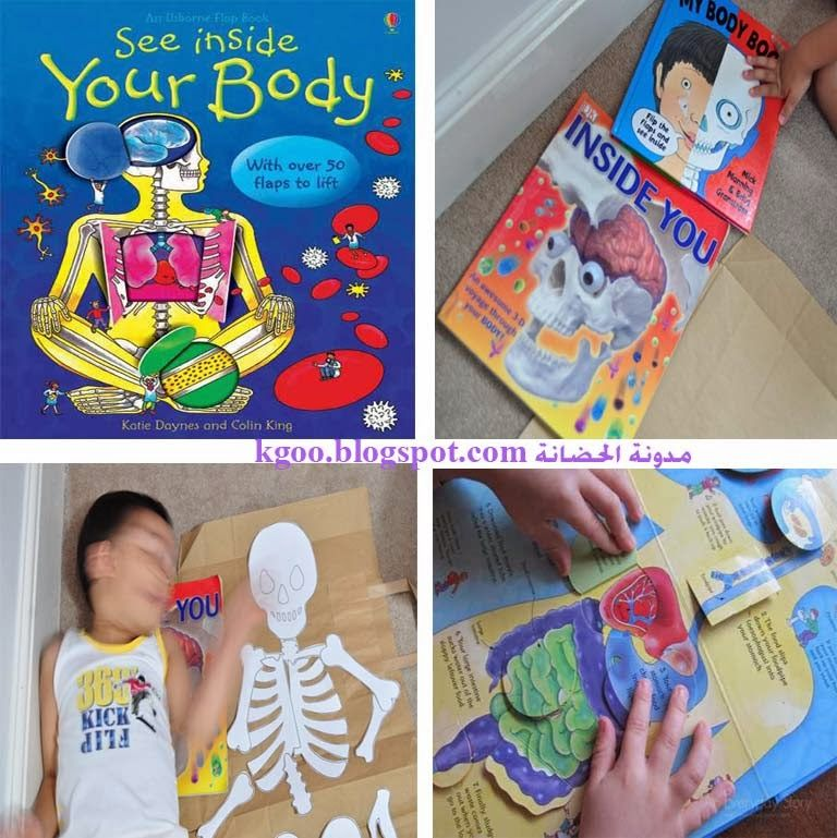 رائع شرح جسم الإنسان للطفل الهيكل العظمى و القفص الصدرى و المخ و الجهاز الهضمى بالصور والفيديو Projects To Try Blog Blog Posts