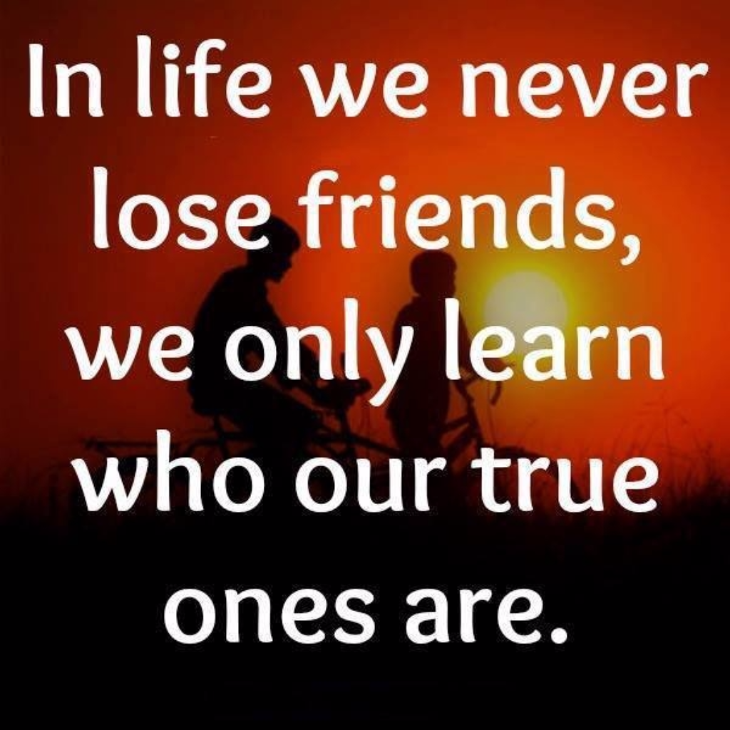 Quotes About Lost Friendships In Life We Never Lose Friends We Only Learn Who Our True Ones Are