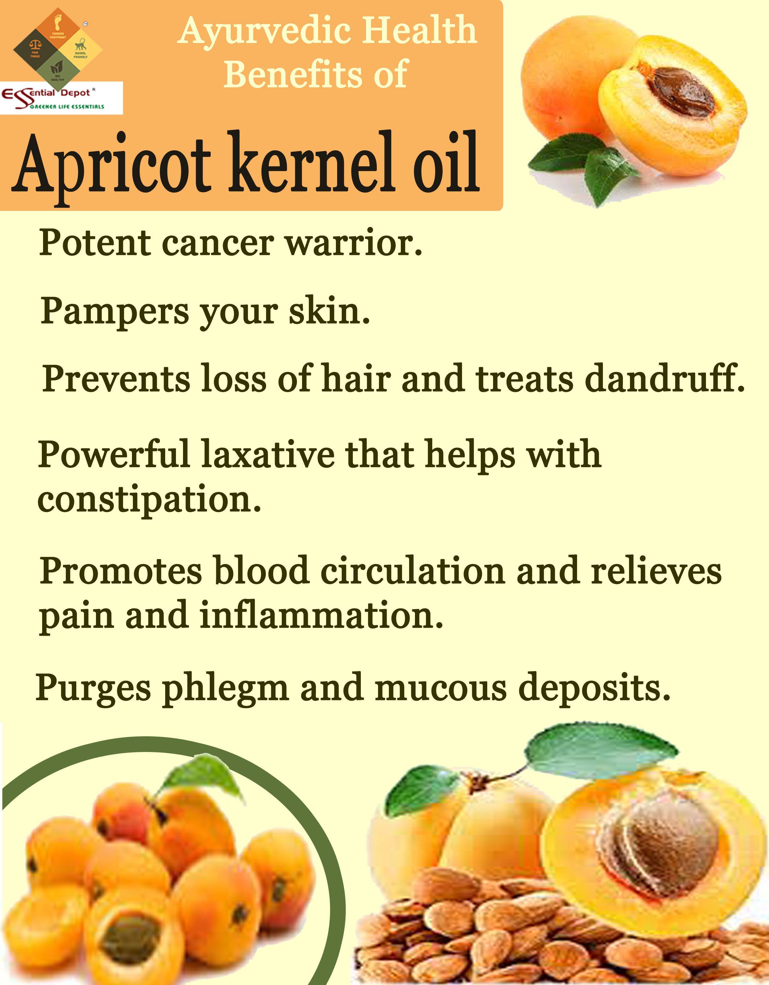 Ayurvedic health benefits of Apricot kernel oil | Ayurvedic Oils