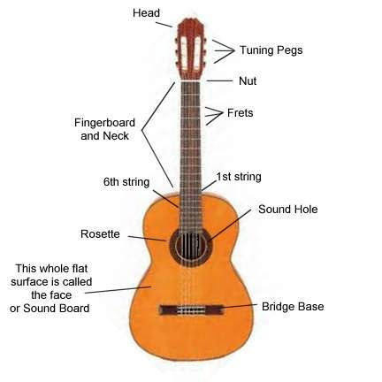 Diagram Of The Parts Of A Classical Guitar Classical Guitar Guitar Guitar Lessons
