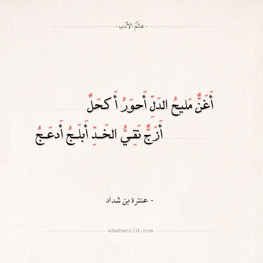 شعر عنترة بن شداد له حاجب كالنون فوق جفونه عالم الأدب Math Math Equations Arabic Calligraphy