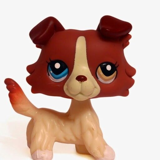 Lps Collie She Has Mixed Colored Eyes Uuuuuuuuuu Lps Collies Lps Pets Lps