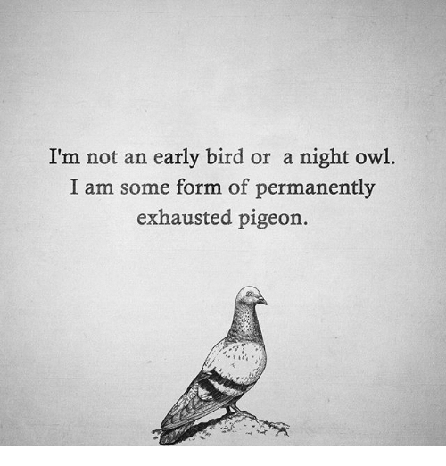 Image Result For I Am Not A Early Bird Or A Night Bird I Am Some