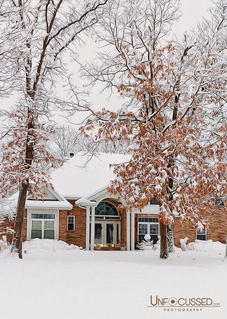 Beautiful winter. Photo by +Bill Tiepelman  #winter   #snow   #photography