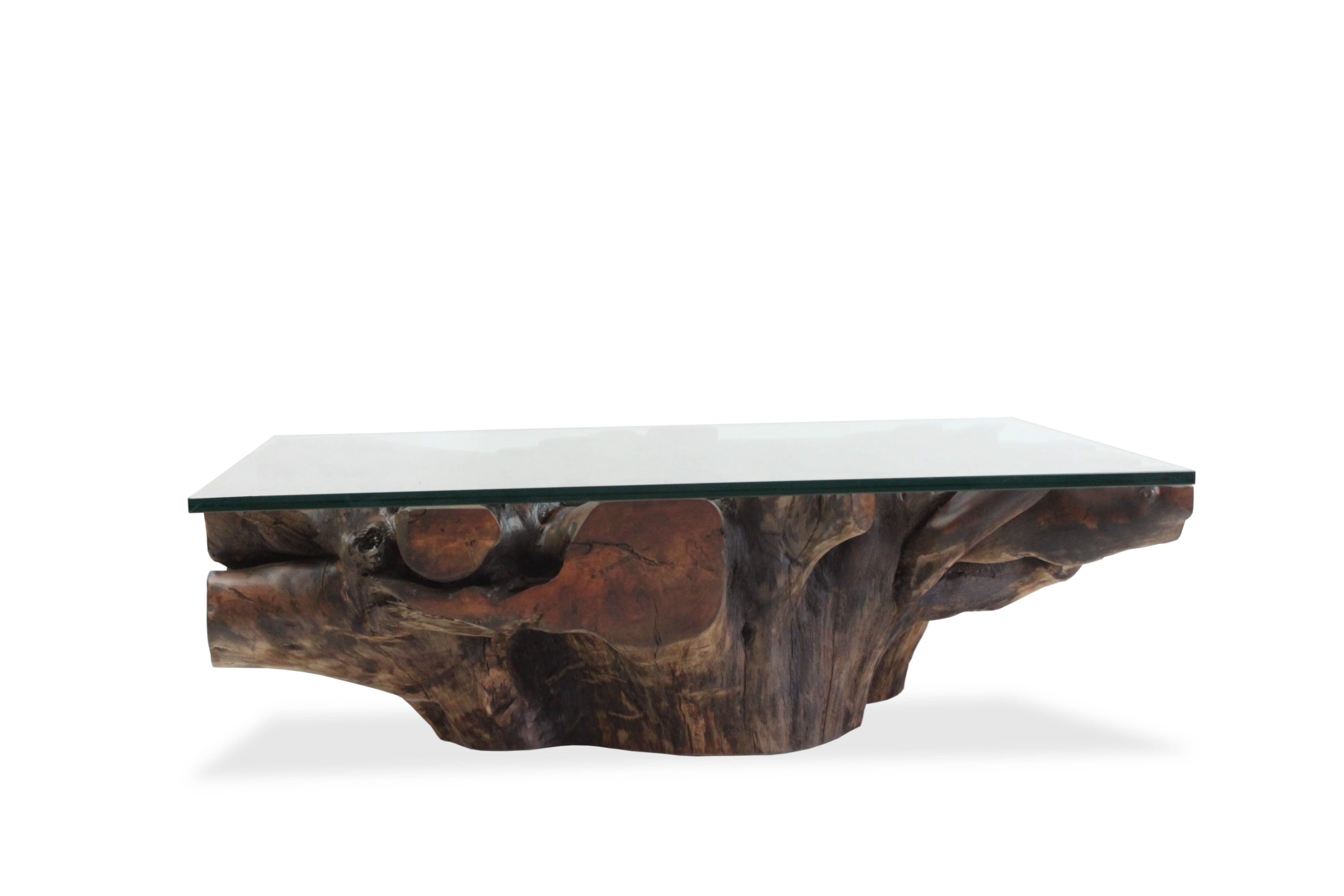 Glass Top Mango Root Coffee Table Hand Crafted By Rotsen Furniture With Salvaged Wood Furniture Desig Raw Wood Coffee Table Coffee Table Wood Coffee Table [ 3168 x 4752 Pixel ]