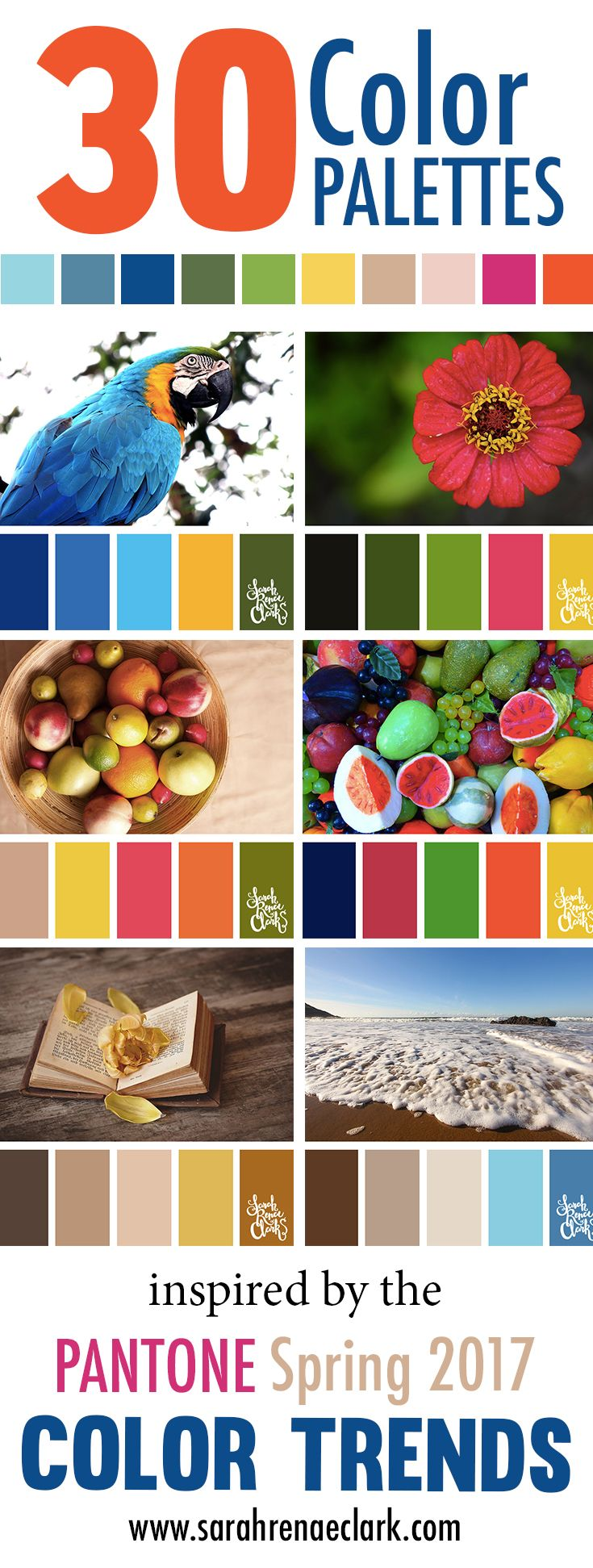 foto de 30 Color Palettes Inspired by the Pantone Spring 2017