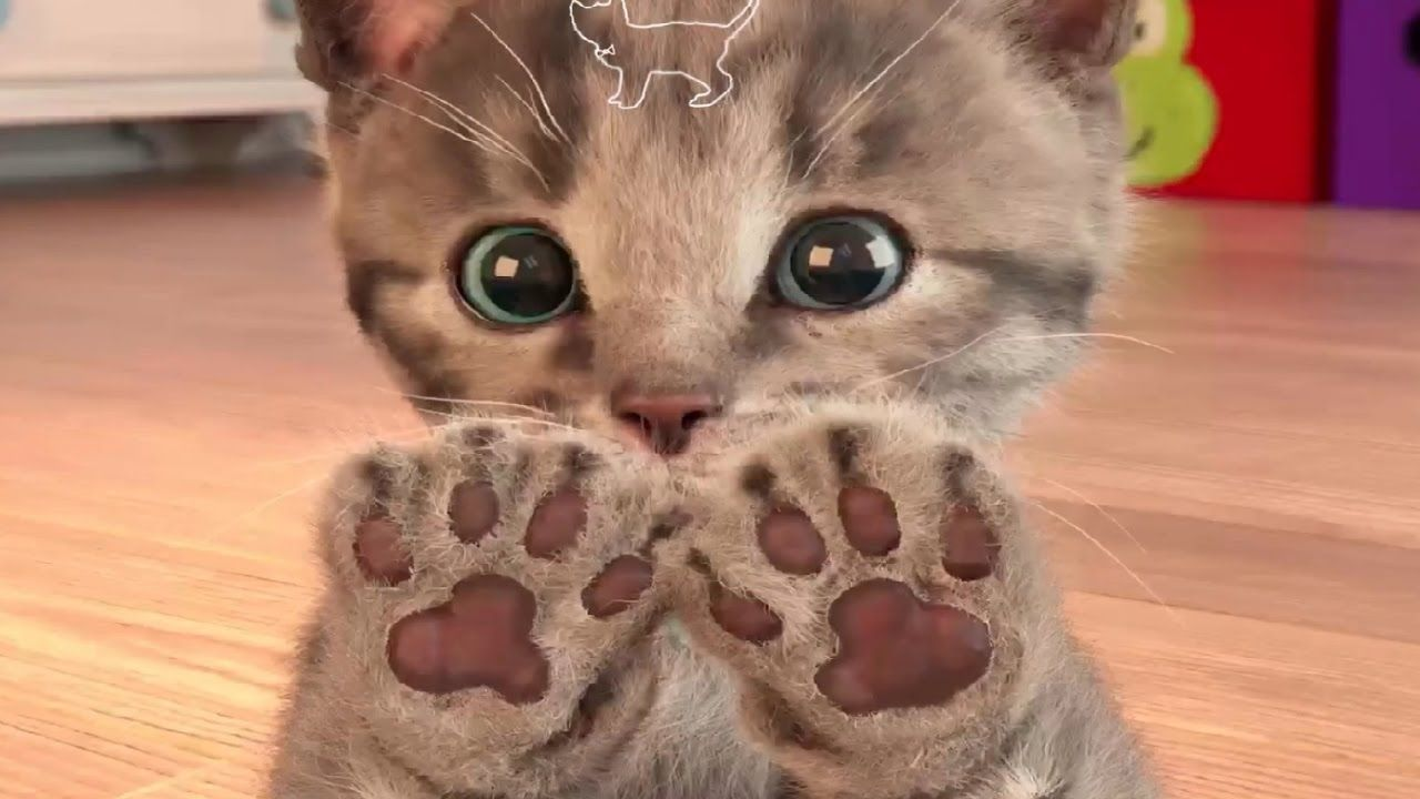 My Favorite Cat Little Kitten Pet Care Play Cat Care Games For Baby Toddlers And Children Youtube Little Kittens Kittens Cutest Cute Little Kittens