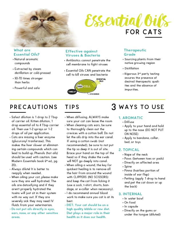 Essential Oils for Cats Tear Pad Are essential oils safe