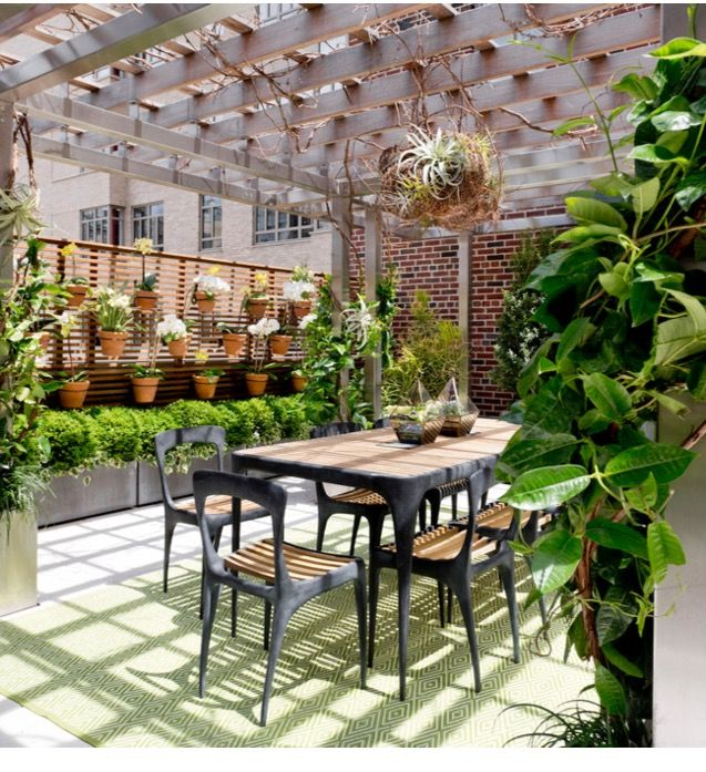 Pergola w air plant chandelier cool backyard pinterest air pergola w air plant chandelier cool aloadofball Images