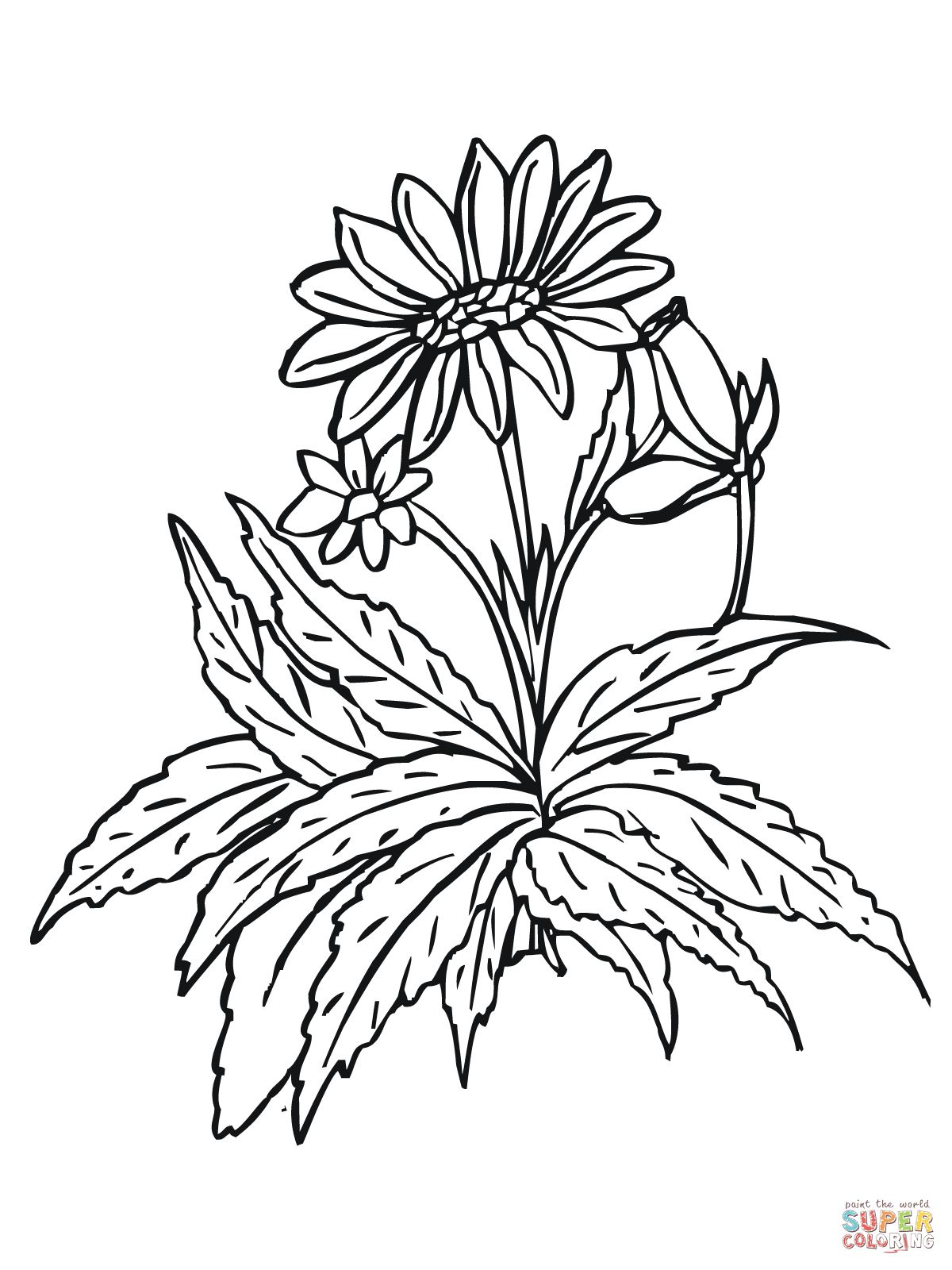 Sunflowers coloring page | SuperColoring.com | [ color your world ...