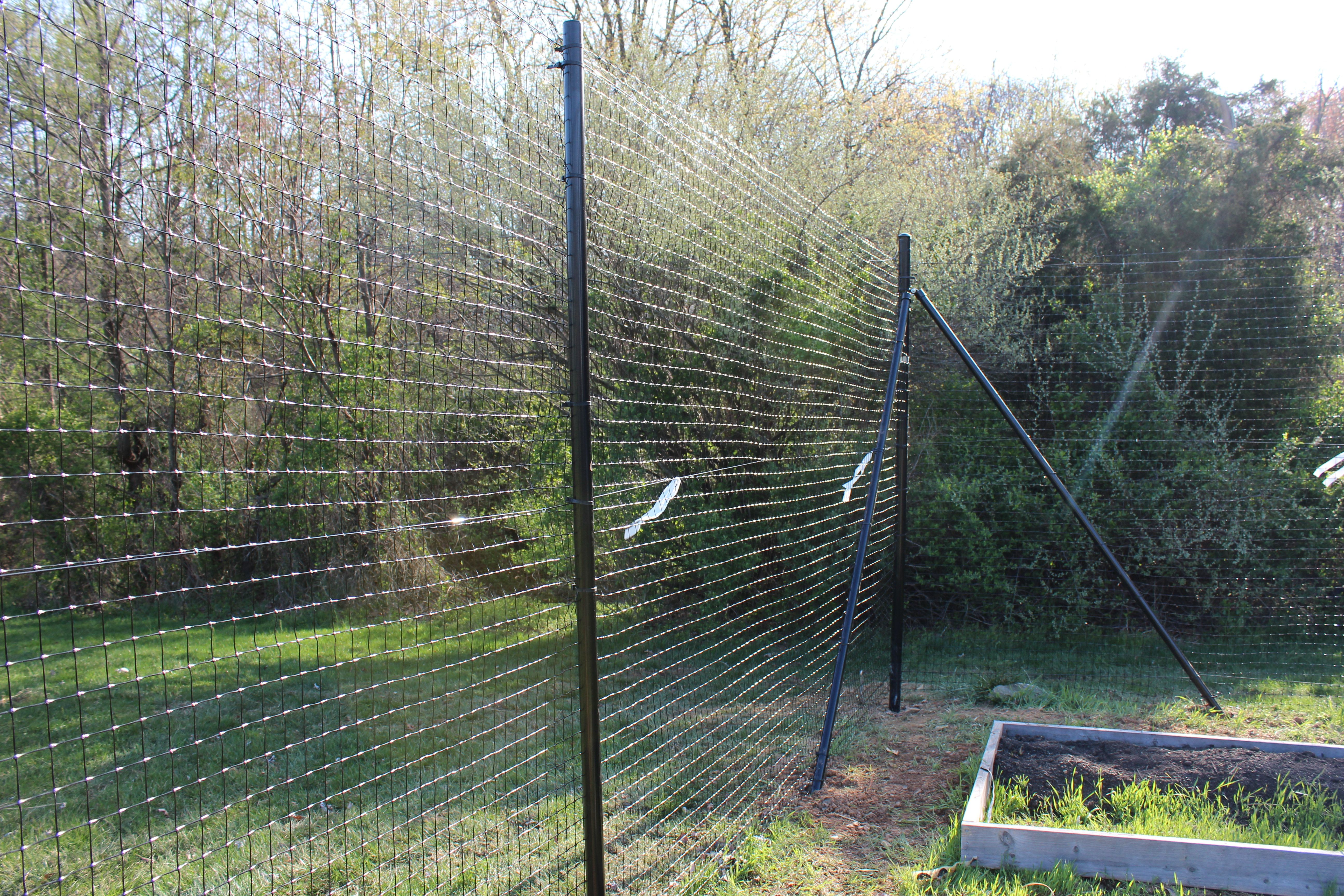 Don\'t buy chain link fences for #dogs - here\'s why ...