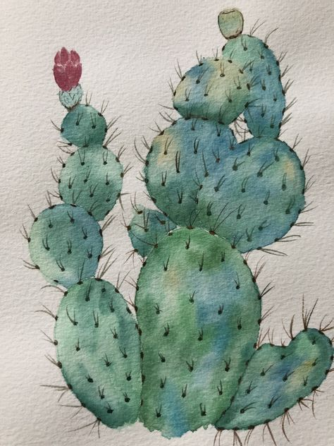 Photo of 19 Ideas plants painting cactus